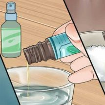 Get Rid of Colds and Flu Using Homemade Eucalyptus Shower Bomb