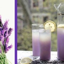 1 Simple Recipe That will Help You Get Rid of Anxiety and Headaches