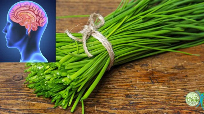 Chives - A Miraculous Herb That Protects Your Brain, Heart, Bones, and the Immune System
