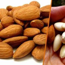Top 5 Reasons to Eat More Activated Almonds