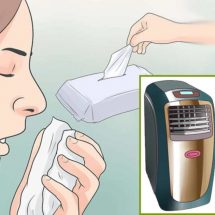 7 Useful Tips to Deal with Fall Allergies