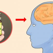Why Using Essential Oil Is Important for Your Brain