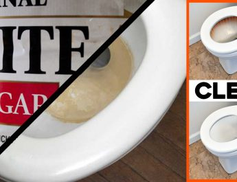 He Pours Vinegar in the Toilet Tank and the Result Is Genius!