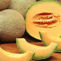 Best Alkaline Foods to Repair, Clean and Restore New Cells