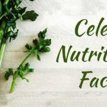 Eating Celery Is Going to Change Your Life [9 Pros About Celery That Are Going to Make You Start Consuming It]