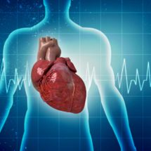 Beat It: How Understanding Cholesterol Can Reduce Your Risk For Heart Disease