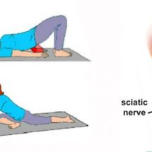 The 6 Best Exercises for Lower Back Pain and Sciatica Relief