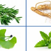 These 4 Herbs Can Protect Your Brain From Alzheimers, Depression, Anxiety And Much More
