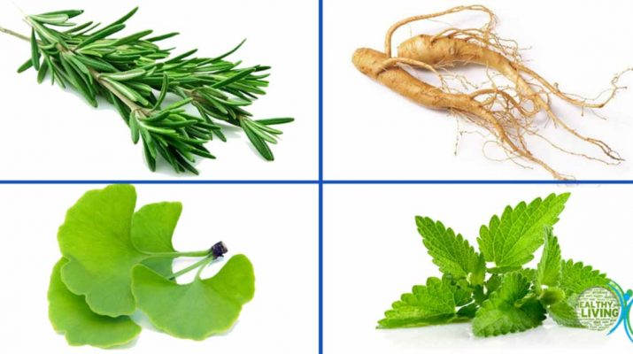 4 Herbs Powerful Enough to Help Prevent Depression, Alzheimer's, Anxiety, and More