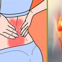 Top 7 Herbs to Relieve Arthritis and Joint Pain