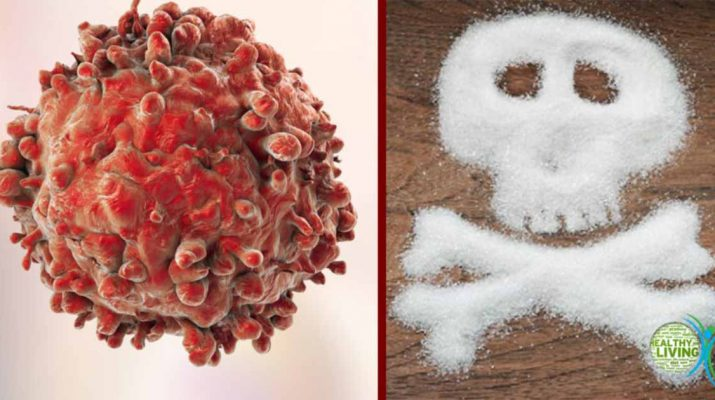 After 9 Years of Research, the Link Between Sugar and Cancer Finally Revealed