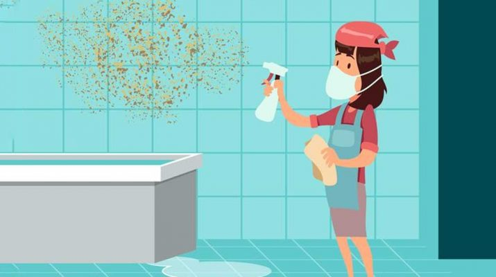 Get Rid of Mold as Soon as Possible - It Can Seriously Damage Your Health!