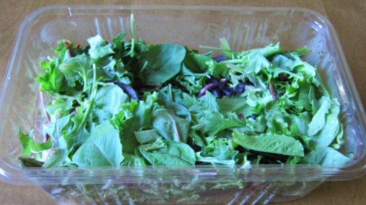 Packaged Salads Are Dangerous for Your Health