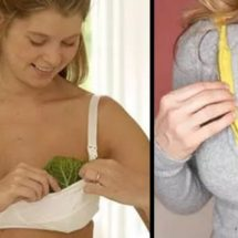 Cabbage Leaves Used as a Relief for Swollen Breasts