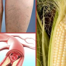 This Just In: Corn Silk Is Incredibly Healthy to Consume [Benefits and Ways to Use]