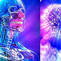Study: Fasting for 72 Hours can Regenerate the Entire Immune System of Humans!