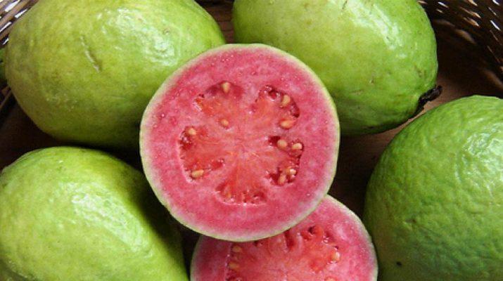 Guava-Contains-4x-More-Vitamin-C-Than-An-Orange,-And-10x-More-Vitamin-A-Than-A-Lemon