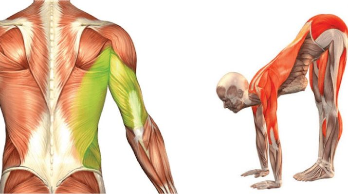 8-Stretches-You-Should-Do-Every-Morning-To-Feel-Strong,-Flexible,-And-Grounded