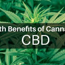 The Many Medicinal Benefits of Cannabis and Cannabidiol (CBD)