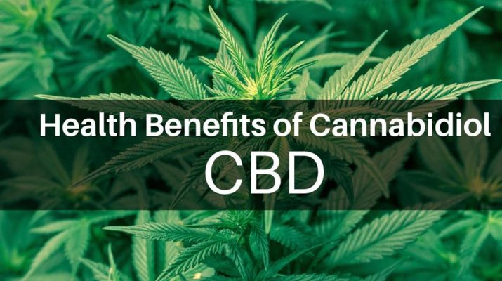 The Many Medicinal Benefits of Cannabis and Cannabidiol