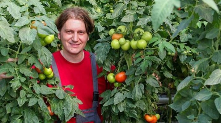 This-is-How-to-Correctly-Plant-Tomatoes-to-Grow-5–8-ft-Plants