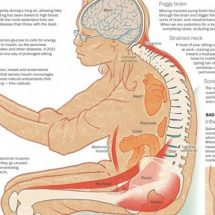 10 Health Dangers of Sitting Too Long, and How It's Slowly Crippling Your Body