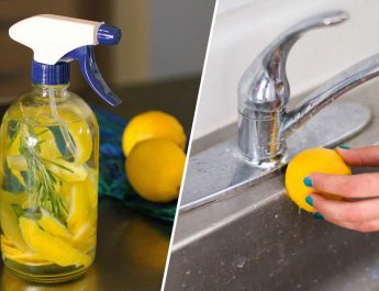6 Genius Ways To Use Lemon Peels Around The House