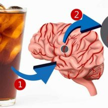 Artificially Sweetened Drinks (Aspartame etc.) Found To Triple Your Risk Of Stroke & Dementia