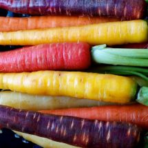Carrots 101: Proven Health Benefits and Nutrition Facts (Calories, Carbs, Fiber, Vitamins)
