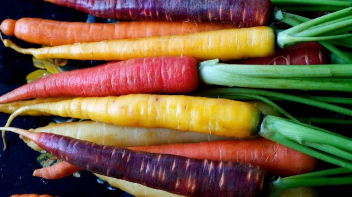 Carrots-101-Proven-Health-Benefits-and-Nutrition-Facts-(Calories,-Carbs,-Fiber,-Vitamins)