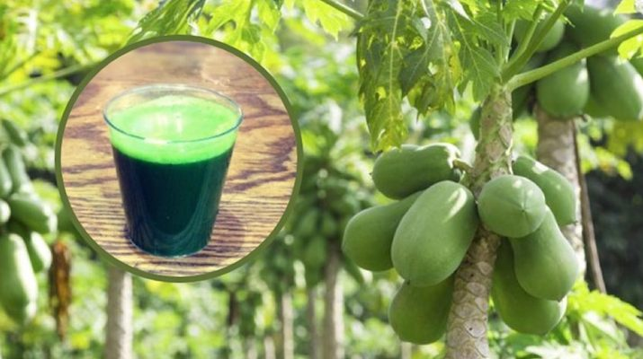 Increase-Blood-Platelets,-Heal-Ulcers-And-Regulate-Blood-Sugar-Levels-With-Papaya-Leaf-Juice