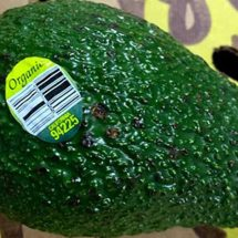 Massive Avocado Recall Announced Over Listeria Concerns (Including Organic Varieties), Six States Affected