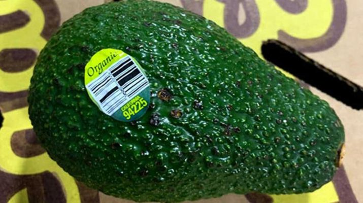 Massive-Avocado-Recall-Announced-Over-Listeria-Concerns-(Including-Organic-Varieties),-Six-States-Affected