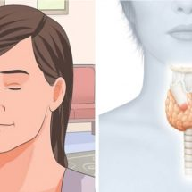 Science Explains How to Jump-Start Sluggish Thyroid to Burn Fat and Boost Metabolism
