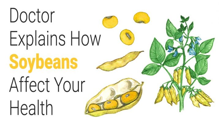 Doctor-Explains-How-Soybeans-Affect-Your-Health