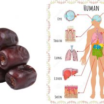 If You Eat 3 Dates Everyday For 1 Week This Is What Happens To Your Body