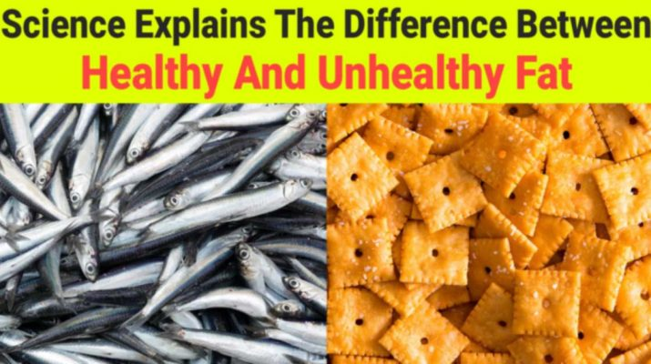 Science-Explains-The-Difference-Between-Healthy-And-Unhealthy-Fat