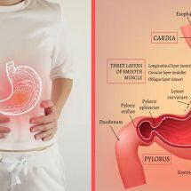 10 Hidden Signs of Gastritis to Never Ignore