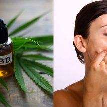 12 Amazing Benefits Of Using CBD Oil