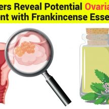 Researchers Reveal Potential Ovarian Cancer Treatment with Frankincense Essential Oil