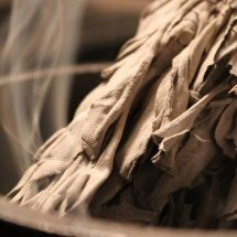 The Science of Smudging: This Is What Sage Does to Bacteria in the Air