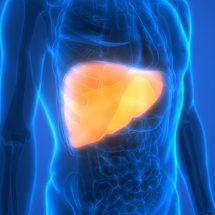 How to Improve Liver Function (in 5 Steps)