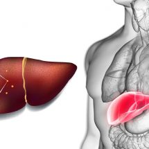 Researchers Explain Why Detoxing Your Liver is So Important for Your Health