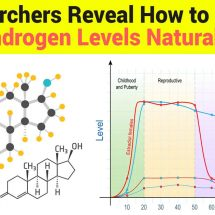 Researchers Reveal How to Lower Androgen Levels Naturally