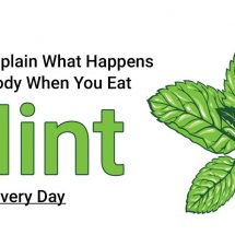 Scientists Explain What Happens to Your Body When You Eat Mint Every Day