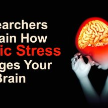 Researchers Explain How Chronic Stress Changes Your Brain