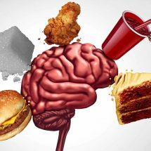 Science Reveals What Happens to Your Brain When You Eat Fast Foods
