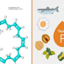 Heard of Vitamin F? Scientists Reveal How it Can Improve Your Health