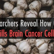 Researchers Reveal How Garlic Kills Brain Cancer Cells